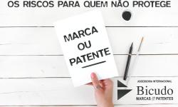 Os Riscos Para A Empresa Que Não Protege A Sua Marca Ou Patente